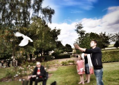 Angel Wings Dove Release Hertfordshire