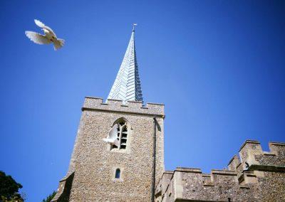 Church Dove