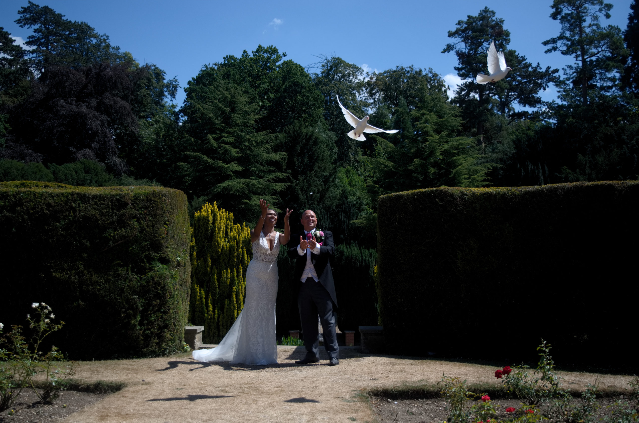 Hertfordshire Wedding Dove Release