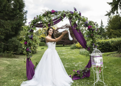 Shuttleworth Bridal Dove Shoot